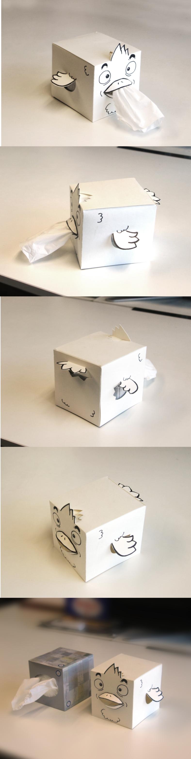 birdBox1
